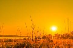 Salida del sol en un paisaje del campo Fotos de archivo libres de regalías