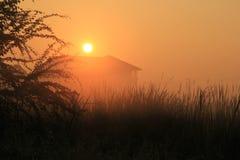 Salida del sol en una mañana brumosa Foto de archivo