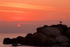 Salida del sol en una orilla rocosa Fotografía de archivo