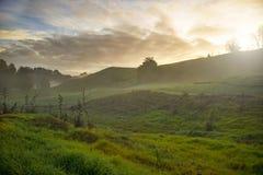 Salida del sol en Waitomo Foto de archivo libre de regalías