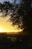 Salida del sol encantadora Imagenes de archivo