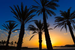 Salida del sol España mediterránea de la playa del EL Arenal de Javea Fotos de archivo libres de regalías