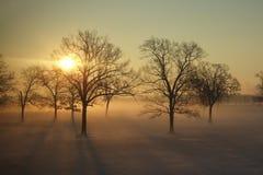 Salida del sol estupenda Fotos de archivo