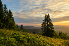 Salida del sol Feldberg, bosque negro Fotografía de archivo