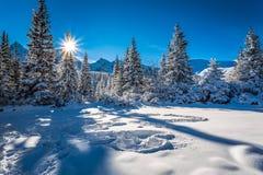 Salida del sol fría del invierno en las montañas Imagen de archivo libre de regalías