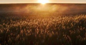 Salida del sol hermosa Imagen de archivo libre de regalías