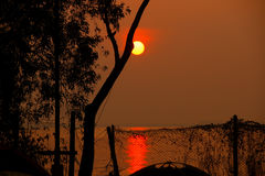 Salida del sol hermosa detrás de los árboles Imágenes de archivo libres de regalías