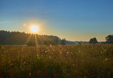 Salida del sol hermosa en Bielorrusia imagen de archivo libre de regalías