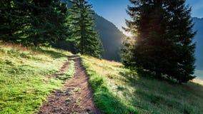 Salida del sol hermosa en el valle Chocholowska, montañas de Tatra en Polonia Imágenes de archivo libres de regalías