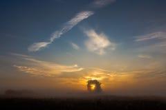 Salida del sol hermosa en la niebla Imagen de archivo