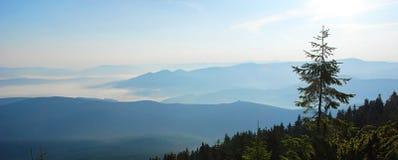 Salida del sol hermosa en las montañas de Cárpatos ucrania Fotografía de archivo