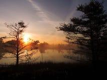 Salida del sol hermosa en pantano cerca del lago, Lituania imagenes de archivo