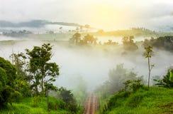 Salida del sol hermosa en Tailandia sobre el valle del givin de la montaña Fotografía de archivo libre de regalías