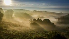 Salida del sol hermosa sobre el valle con niebla imponente en otoño almacen de metraje de vídeo