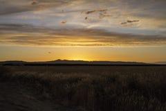 Salida del sol hermosa a través de un campo foto de archivo