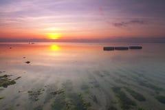 Salida del sol hermosa y tranquila cerca de una playa por completo con algas marinas Fotografía de archivo