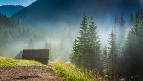 Salida del sol imponente en el valle Chocholowska, montañas de Tatra en Polonia Fotos de archivo libres de regalías