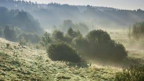 Salida del sol imponente sobre el valle con la niebla hermosa en el otoño, timelapse almacen de video