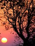 Salida del sol india Fotos de archivo