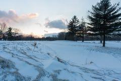 Salida del sol del invierno en el campo de golf fotografía de archivo libre de regalías