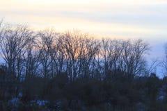 Salida del sol La margen izquierda del río de Tura Tyumen Ruso Siberia Foto de archivo