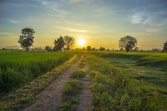 Salida del sol ligera Fotografía de archivo