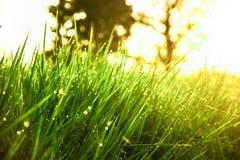 Salida del sol ligera Imagen de archivo libre de regalías