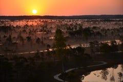 Salida del sol mágica en el pantano Kemeri Letonia imagenes de archivo