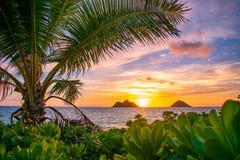 Salida del sol magnífica de la playa de Lanikai foto de archivo libre de regalías