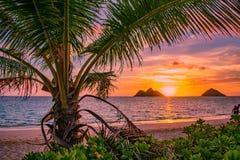 Salida del sol magnífica de la playa de Lanikai fotografía de archivo libre de regalías