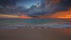 Salida del sol del mar y playa exótica de la isla del paraíso Playa tropical con la palmera metrajes