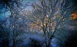 Salida del sol Nevado Fotografía de archivo