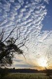 Salida del sol, nubes, campo Foto de archivo libre de regalías