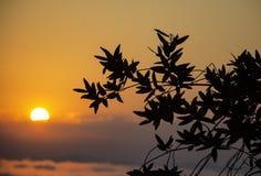 Salida del sol nublada colorida foto de archivo