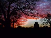 Salida del sol o puesta del sol en Oklahoma rural, siluetas del árbol Foto de archivo