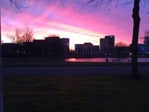 Salida del sol púrpura en el parque en Rotterdam imágenes de archivo libres de regalías
