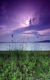 Salida del sol púrpura, playa Imagen de archivo libre de regalías