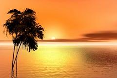 Salida del sol. Palma Foto de archivo libre de regalías