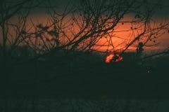 Salida del sol por la mañana Imágenes de archivo libres de regalías