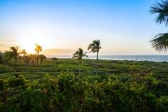 Salida del sol por la playa foto de archivo