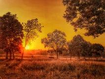 Salida del sol/puesta del sol con la luz de oro Fotos de archivo