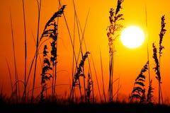 Salida del sol/puesta del sol de la playa Imagen de archivo libre de regalías