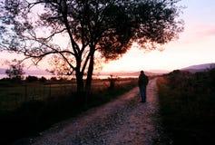 Salida del sol roja y hombre Foto de archivo