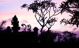 Salida del sol rosada en Ubud Bali Foto de archivo