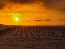 Salida del sol rural Foto de archivo libre de regalías