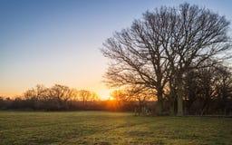 Salida del sol rural Fotografía de archivo