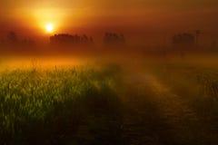 Salida del sol según la tierra Foto de archivo libre de regalías