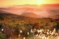 Salida del sol shinning en el valle Fotos de archivo