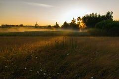 Salida del sol sobre árboles y prado fotografía de archivo