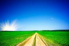 Salida del sol sobre campo de la soja. Fotos de archivo